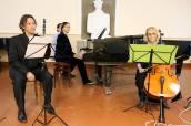 Trio Gutu-Dogariu-Miclea